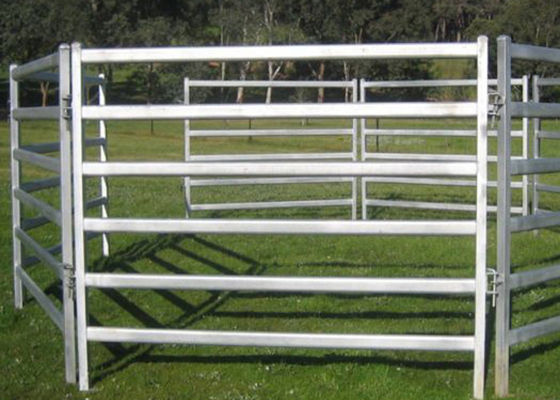 China Easily Setup Metal Farm Fence , Pipe Corral Panels For Goats Anti Corrosion supplier