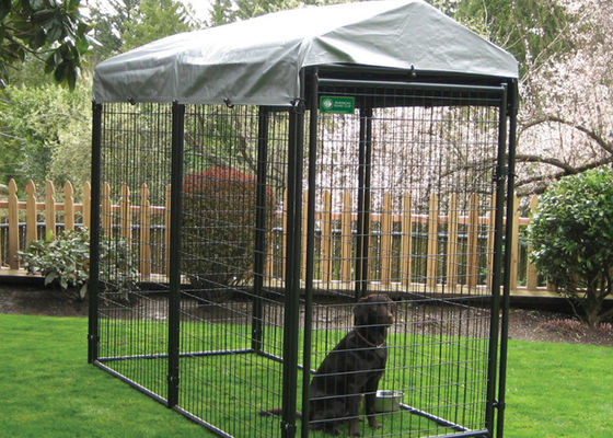 China Professional Grade Modular Dog Kennels , Outside Dog Kennels For Large Dogs supplier