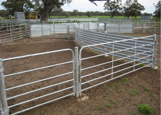 China Professional Uv Proof Cattle Corral Panels With CE / ISO9001 Certificate  supplier