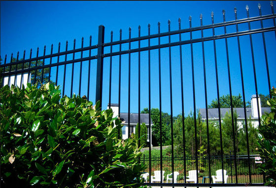 Easy Install / Handle Decorative Wrought Iron Fence Panels