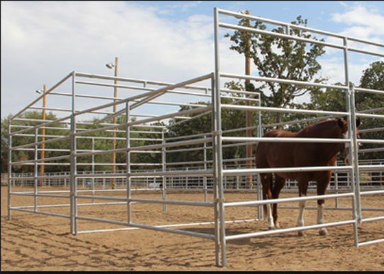 China Powder Coated Galvanized Cattle Corral Panels Good Oxidation Resistance  supplier