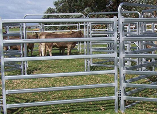 Portable Goat Fence Panels / Galvanized Livestock Fencing Simple