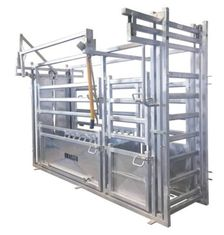 China Professional Hot DIP Galvanized Cattle Crush with Weighing Scale supplier