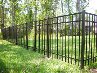China Black Steel Garden Fence Panels , Galvanized Steel Fence 40mm*40mm Rail Size supplier