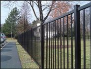 China 1.8m H Powder Coated With Black Color Of Steel Tubular Fence For 2 Rails factory