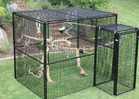 China Durable Outdoor Aviary Cage , Metal Bird Cage Black Or Dark Green Color factory