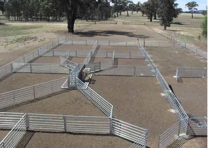 Livestock Cattle Fence