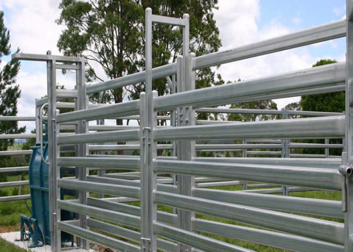 Smooth Surface Cattle Yard Panels , Lightweight Livestock Panels ...