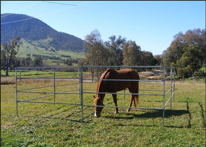 1 8m Height Cattle Farm Panels Animal Metal Horse Fence