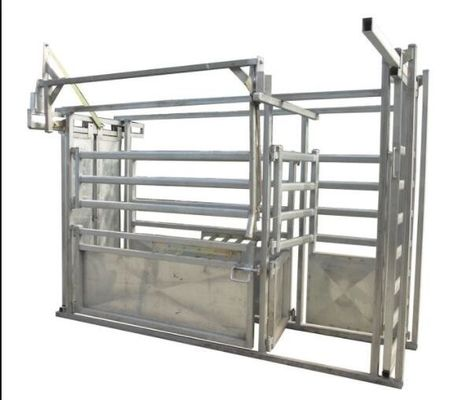 Galvanized Standard Horse Or Cattle Corral Panels / Heavy Duty Cattle Crush CE ISO9001