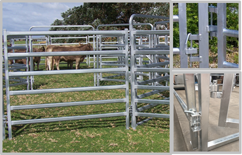 No Sharp Edge Safety Horse Corral Panels , Horse Gate Panels For Outdoor