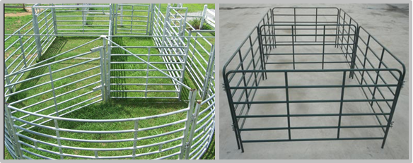 Hot Dipped Galvanized Cattle Corral Panels Customized Sizes / Colors Available